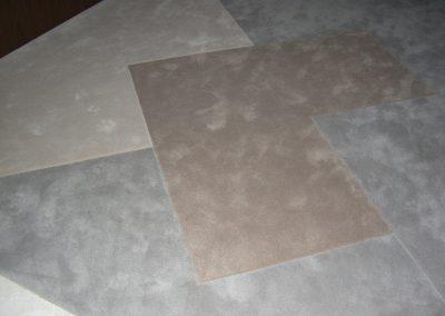 Carpet-Living room entry